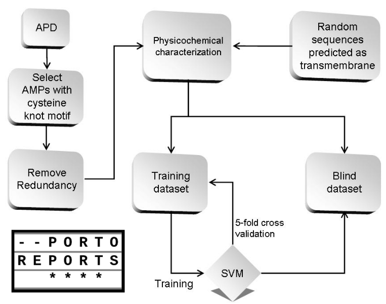 An SVM model based on physicochemical properties to predict antimicrobial activity from protein sequences with cysteine knot motifs